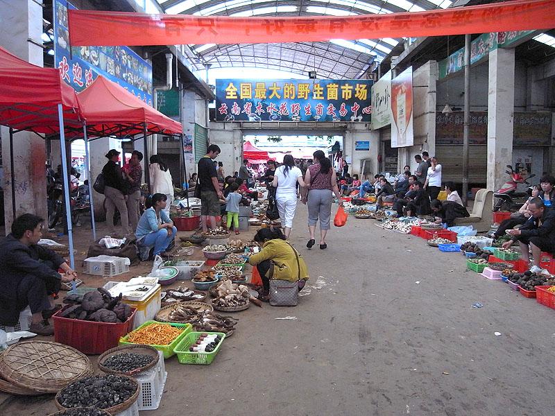 雲南省 昆明市 茸市場